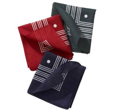 Barbour Dot Handkerchief Set